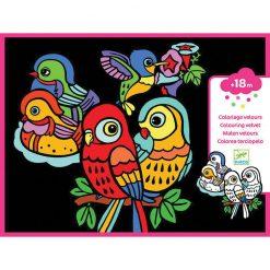 Zamatová maľovanka - Vtáčatká 1