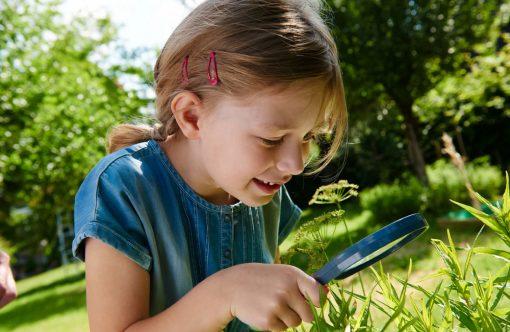 Haba Terra Kids Lupa 2