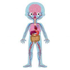 Janod Vzdelávacie Puzzle Ľudské telo 4