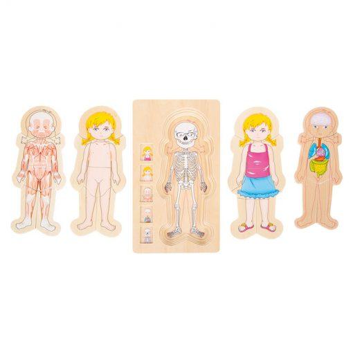 Small Foot by Legler Puzzle ľudské telo Lili 3