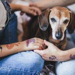 Kresky Tetovačky Draci 2