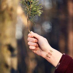 Kresky Tetovačky Lesné 2